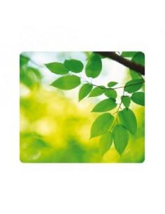 Prodotti per pulizia lavagne AF - Panni assorbenti per pulizia lavagne - ASCH050 (conf.50)