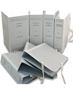 Originale Xerox 106R01463 Toner standard ciano